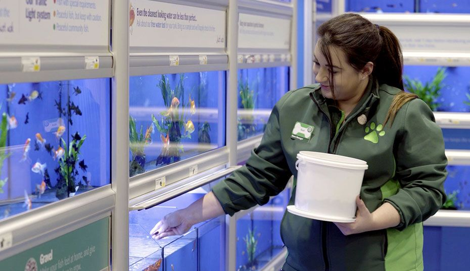 Jobs At Pets At Home Retail Support Office And Distribution Centre Careers Pets At Home Jobs Careers